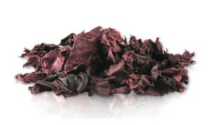 Dried Dulse