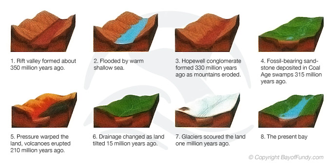 A Geological Summary of the Formation of the Bay of Fundy