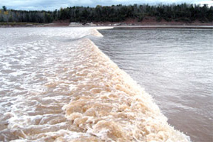 Incoming Tidal Bore